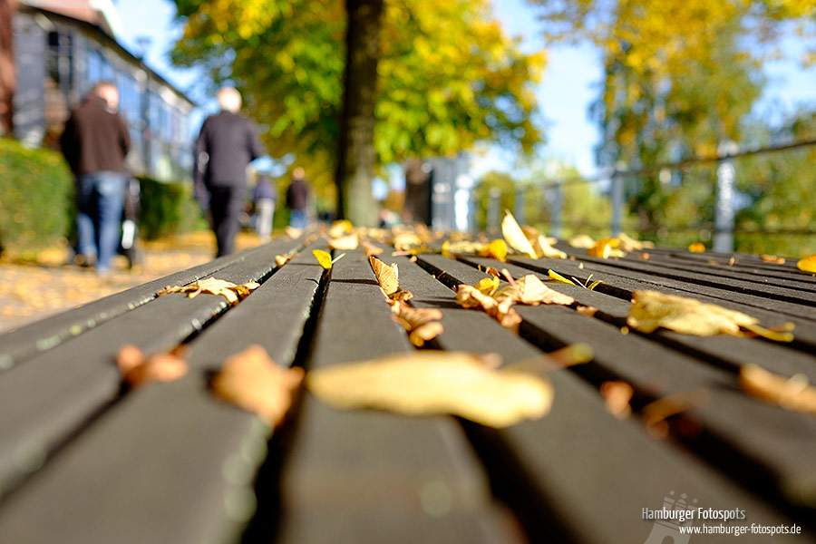 Herbst in Hamburg