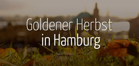 Goldener Herbst in Hamburg